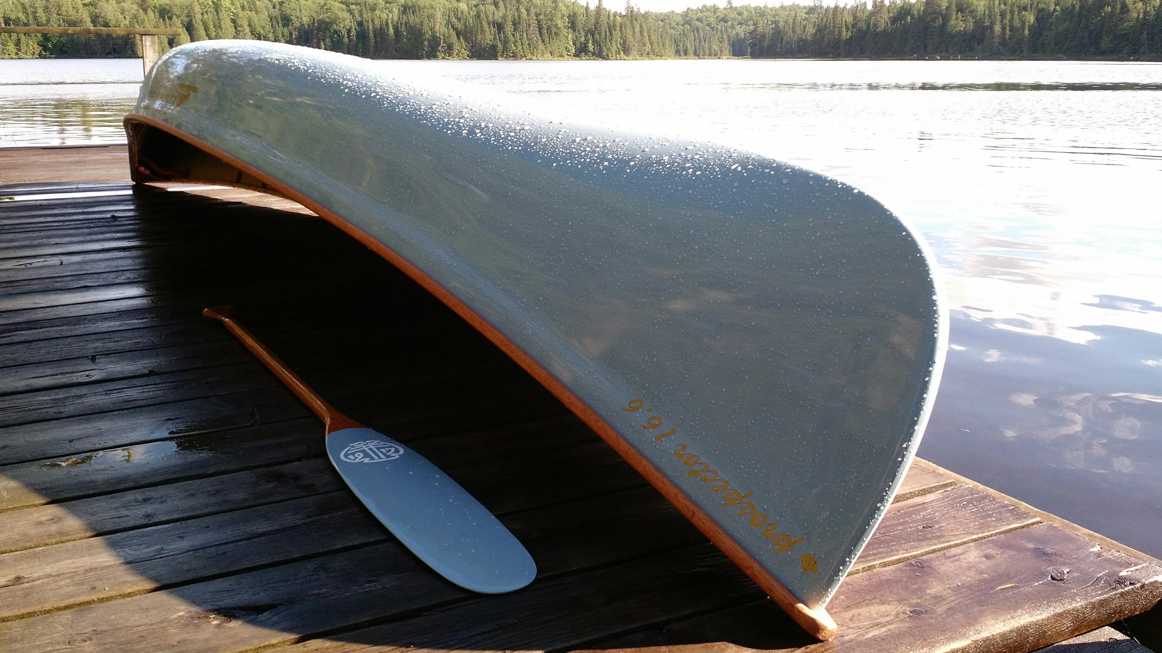 Langford Tom Thomson Kevlar Canoe and Paddles